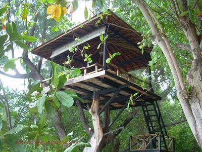 https://blog.jelaja.com/sejuta-pesona-pulau-seribu-resort/