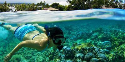http://linikini.id/trivia/2927/6-spot-snorkeling-untuk-belajar-renang