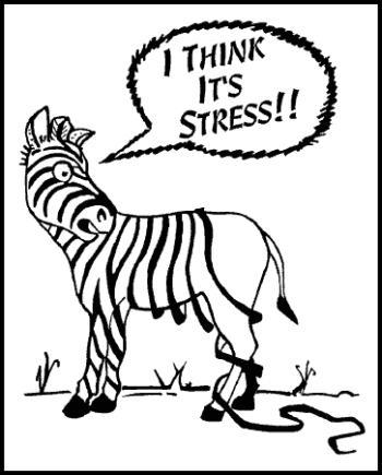 1. Hindari stres berlebih