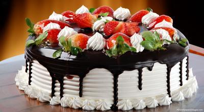 5 Cake Shop Enak di Bandung