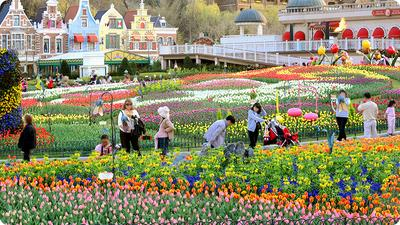 8. Everland - Yongin, Gyeonggi-Do, Korea Selatan