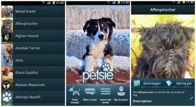 5. Petsie Dog Breeds