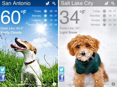 6. Weather Puppy