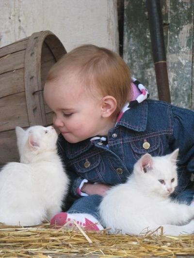 Kumpulan Foto Kebersamaan Anak Kecil dan Kucingnya