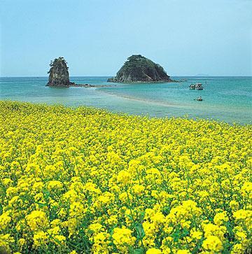 7 Tempat Wisata Favorit di Pulau Jeju