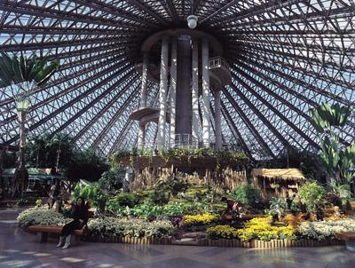 7. Yeomiji Botanical Garden