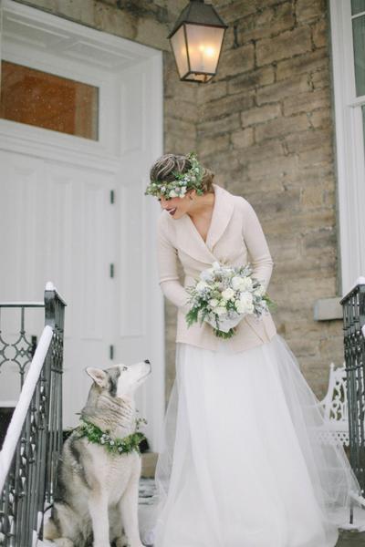 6. Anjing pun harus serasi dengan pengantin