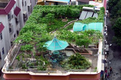 1. Pastikan Atap Rumah Kuat