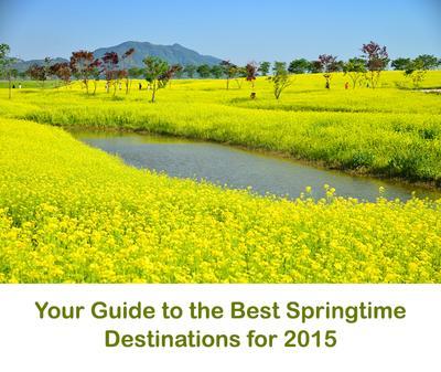 Tempat Terbaik Menikmati Musim Semi di Korea Selatan Part 2
