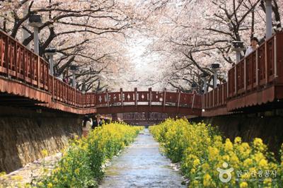 Yeojwacheon Stream
