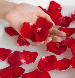 5 Bunga Cantik yang Terbukti Berkhasiat untuk Kulit
