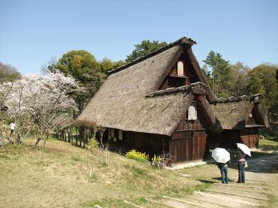 10. Melihat rumah-rumah jaman dulu di Open-Air Museum of Old Japanese Farm House