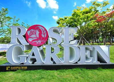 Chosun University Rose Garden