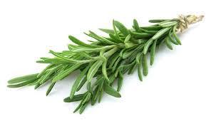 Sayuran Herbal