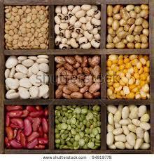 Kacang-Kacangan