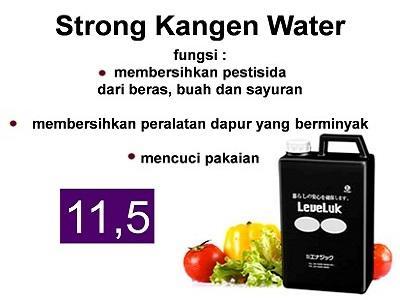 5. Strong Kangen Water (pH 11,5)