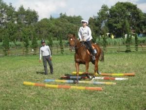 Belajar Menunggang Kuda