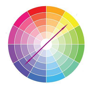3. Pilih Warna-Warna yang Saling Berseberangan