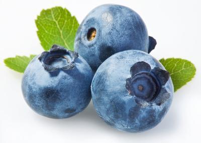 Manfaat Blueberry untuk Kesehatan Tubuh dan Kecantikan Kulit
