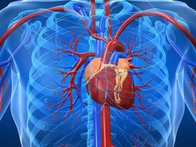 Risiko Penyakit Jantung
