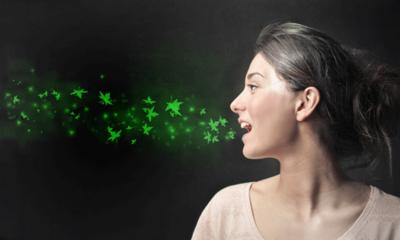 12. Teh hijau Mencegah Kerusakan Gigi yang Diakibatkan oleh Bakteri