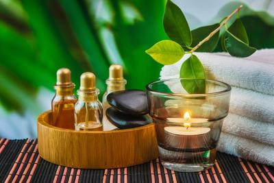 Camellia Oil yang Akan Bantu Kembalikan Kulit Mulusmu