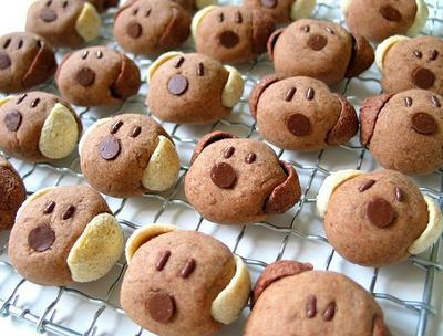 Ini Resep Cookies Koko Krunch Yang Super Enak Dan Crunchy