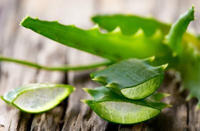 Bisa Bikin Kulit Makin Cantik, Ini Dia Daftar Manfaat Aloe Vera Untuk Kulitmu!