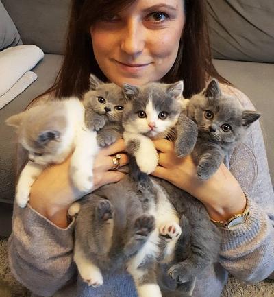 [BEAUTYNESIA CHALLENGE] Punya Kucing Kesayangan? Yuk, Tunjukkan Foto Kucing Lucu Kamu di Sini!