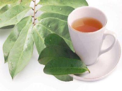 FORUM] Sharing manfaat air rebusan daun salam untuk diet