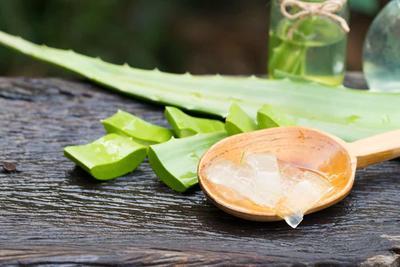 [FORUM] Nature Republic Aloe Vera Gel bisa untuk menumbuhkan rambut tipis gak?