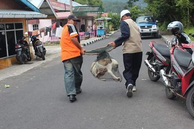 [FORUM] Pendapat kalian tentang razia hewan yang diadain pemprov DKI Jakarta?
