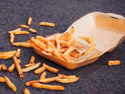 [FORUM] Teori makanan kalo jatuh belum 5 menit masih boleh diambil tuh bener gak ya??