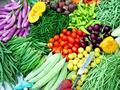 [FORUM] rajin makan sayur setiap hari apa berarti itu pola hidup yang sehat?