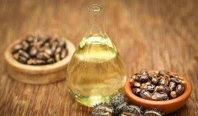 5. Minyak Zaitun dan Minyak Jarak