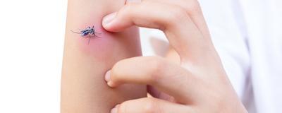 [FORUM] Cara ngilangin bekas gigitan nyamuk gimana sih sist,,