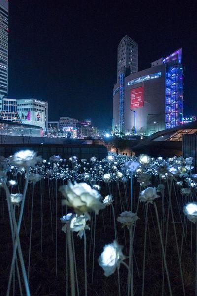 2.Dongdaemun Design Plaza, Seoul