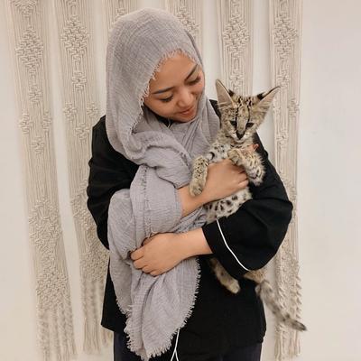 Mengenal Kucing Serval, Kucing Eksotis yang Dipelihara oleh Rachel Vennya