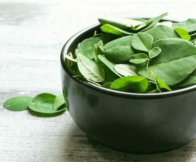 Moringa, Daun Ajaib dengan Segudang Manfaat untuk Kesehatan Tubuh dan Kulit