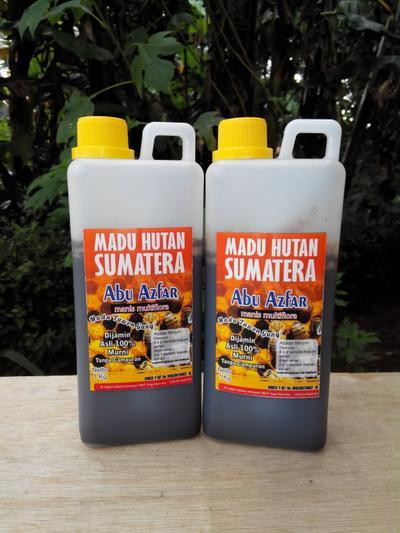 Madu Hutan Sumatera