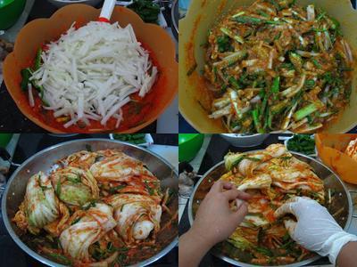 Bahan untuk Membuat Kimchi