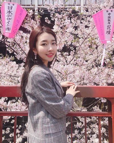 Tak Kalah dengan Jepang, Ini 5 Tempat Terbaik Menikmati Cherry Blossom di Korea