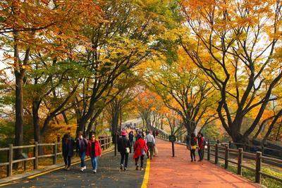 Jalan-Jalan Hemat Ke Korea dengan Mengunjungi Destinasi Gratis Berikut Ini