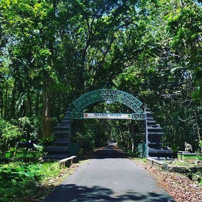 3. Wisata Taman Nasional Alas Purwo