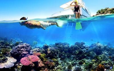 Mau Snorkeling di Pulau Seribu? Ini Rekomendasi Tempatnya