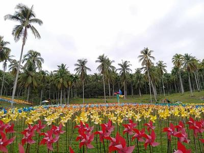 Baru di Aceh, Kamu Bisa Liburan Hemat di Taman Belangi