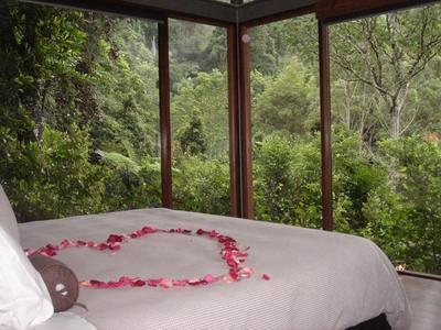 4. Australian Rainforest