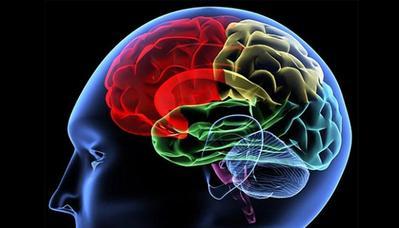 1. Meningkatkan Fungsi Otak