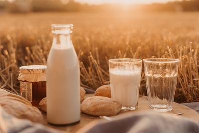 6. Susu dengan kandungan lemak yang tinggi