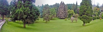 4.Kebun Raya Bedugul